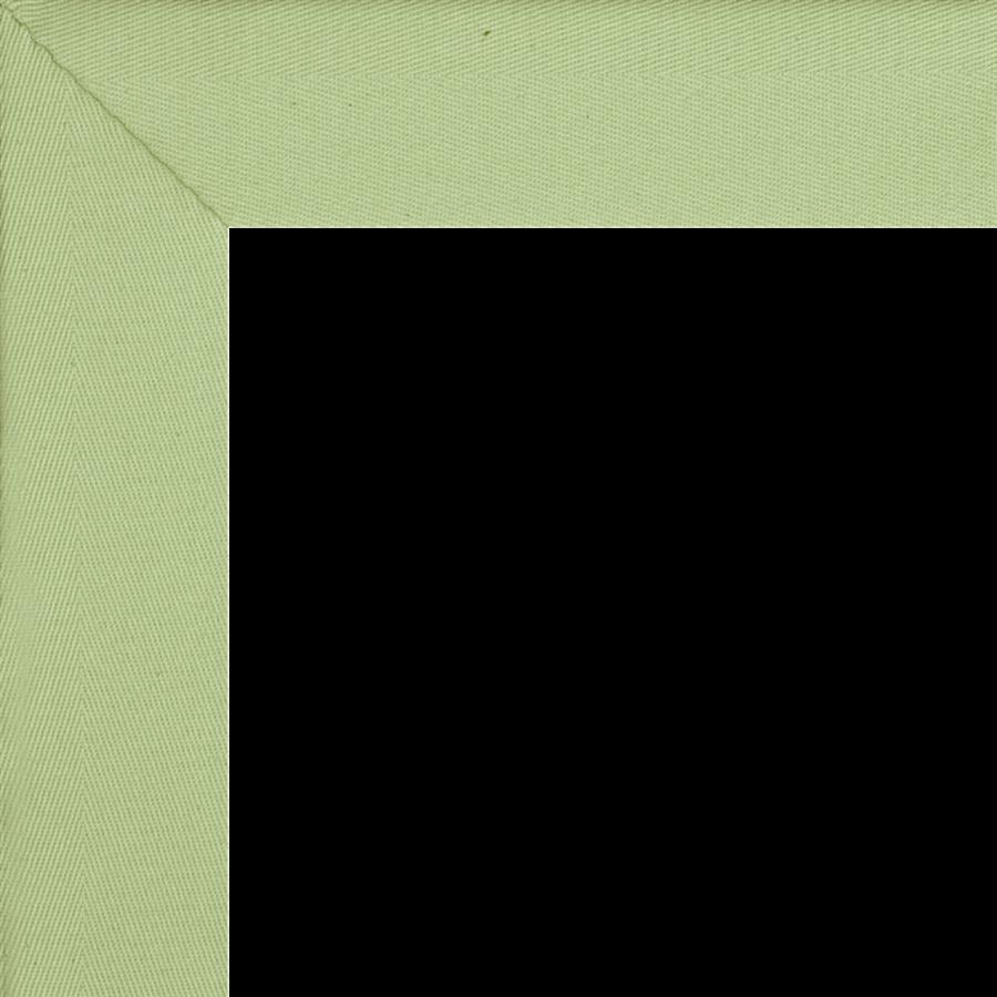793 Lime Green- Retiring